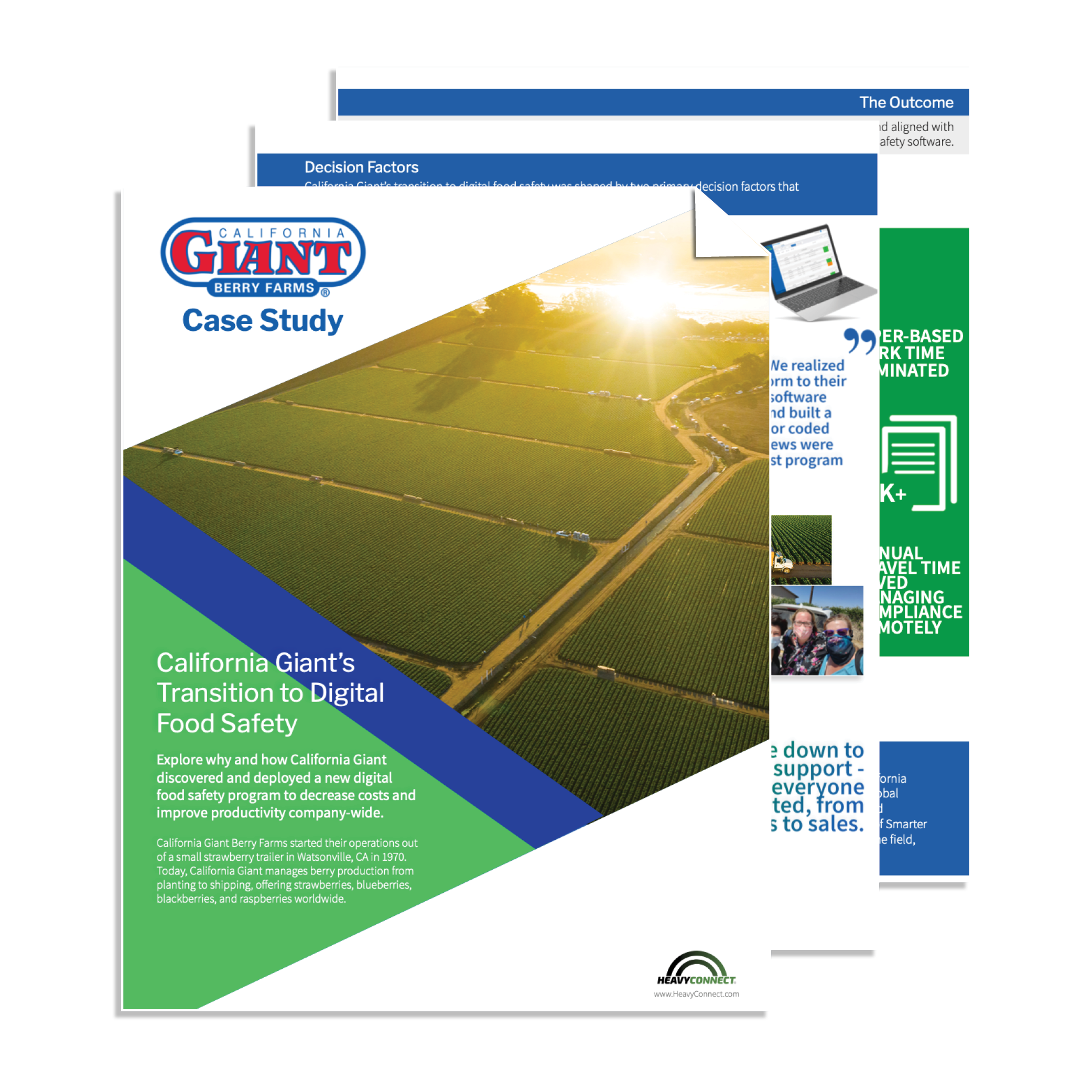 California Giant Food Safety Case Study