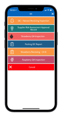 QA Checklist Options
