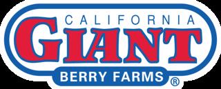 CaliforniaGiantBerryFarms