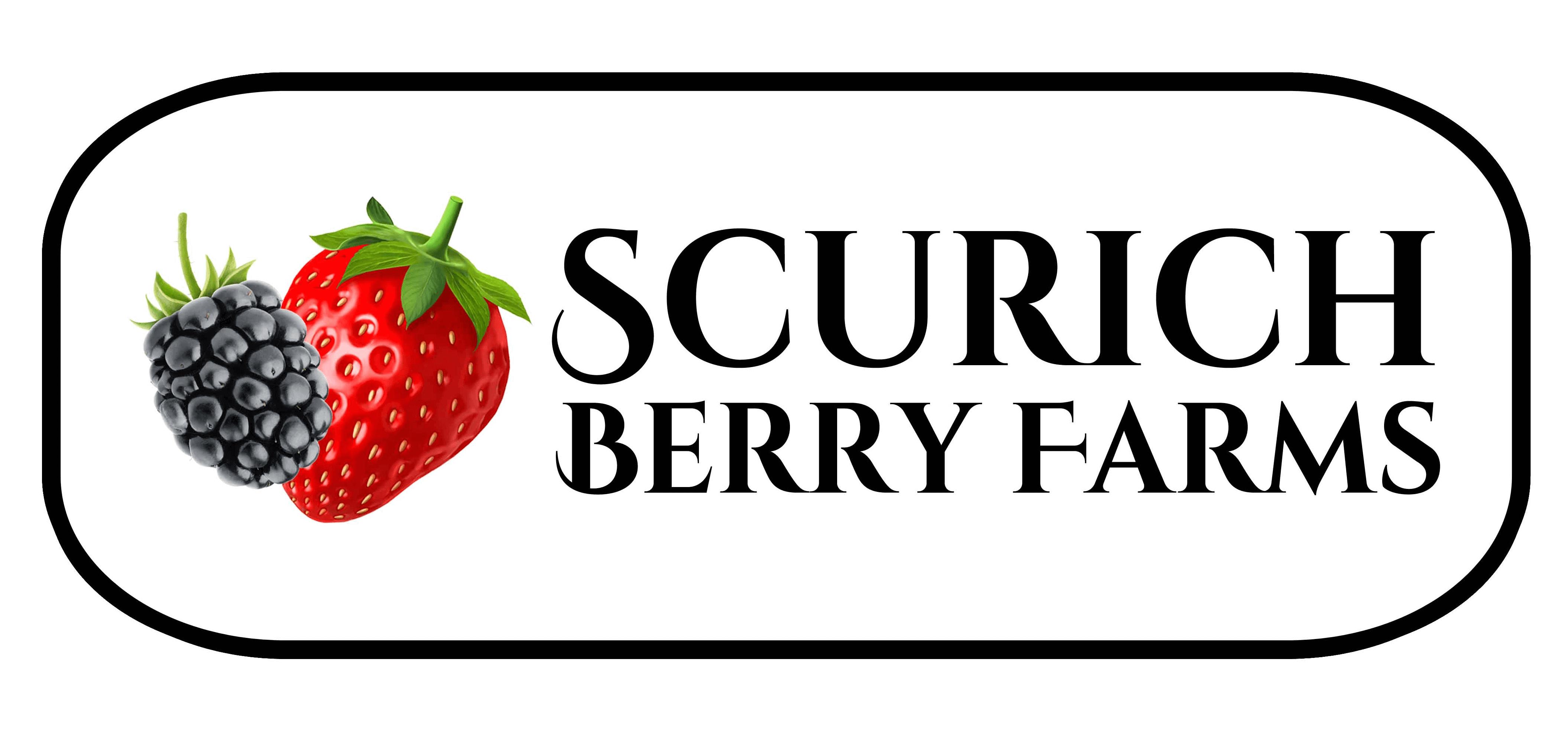 Scurich%20Berry%20Farms